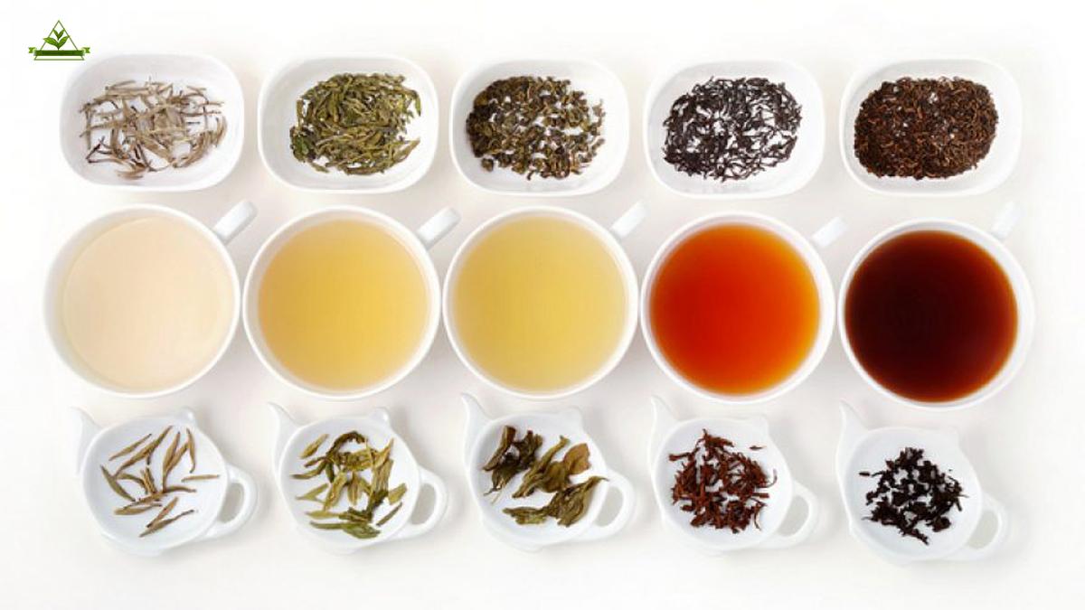 فروش عمده انواع چای