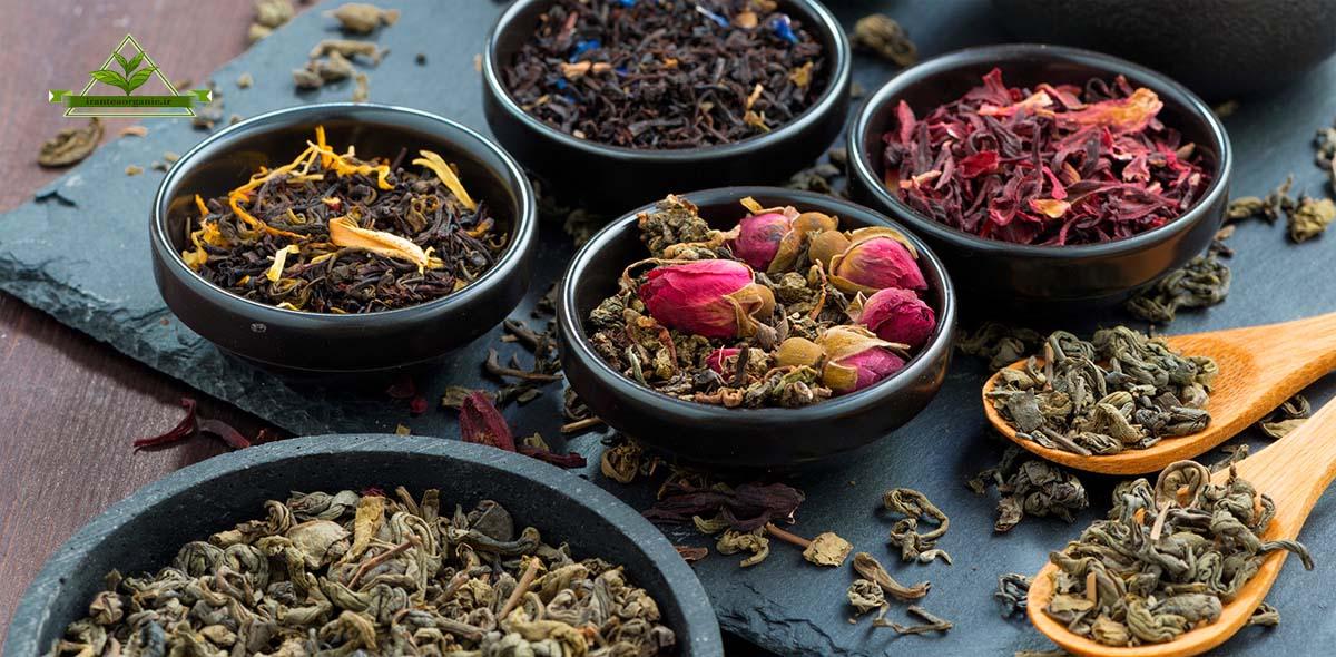 پخش چای سیاه و چای سبز شمال