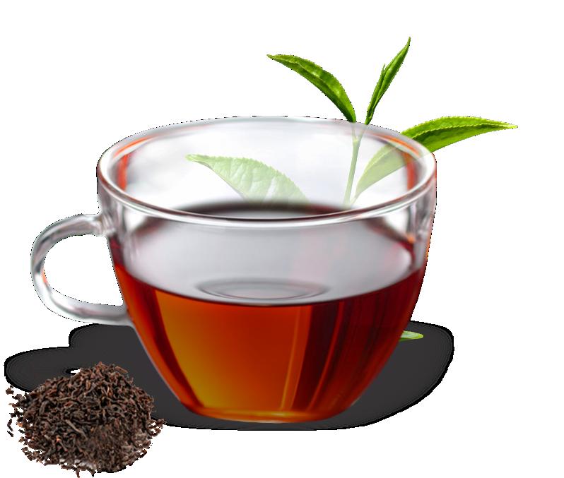 خواص چای ارگانیک
