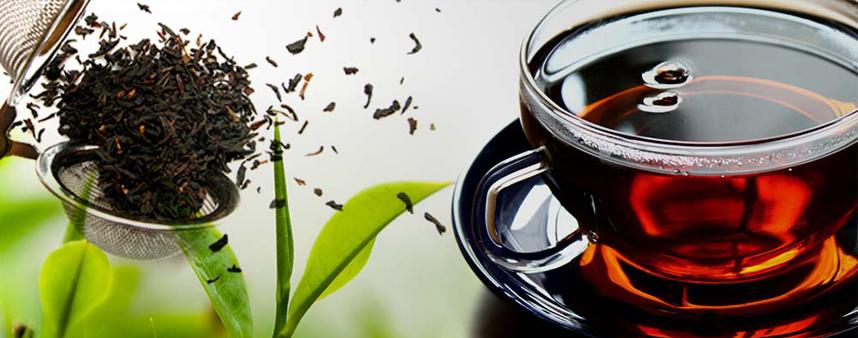 فروش چای سیاه شال