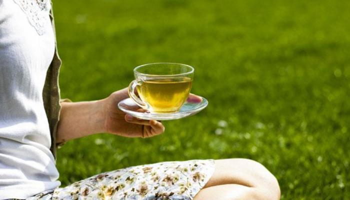 فروش چای سبز ایرانی بهاره