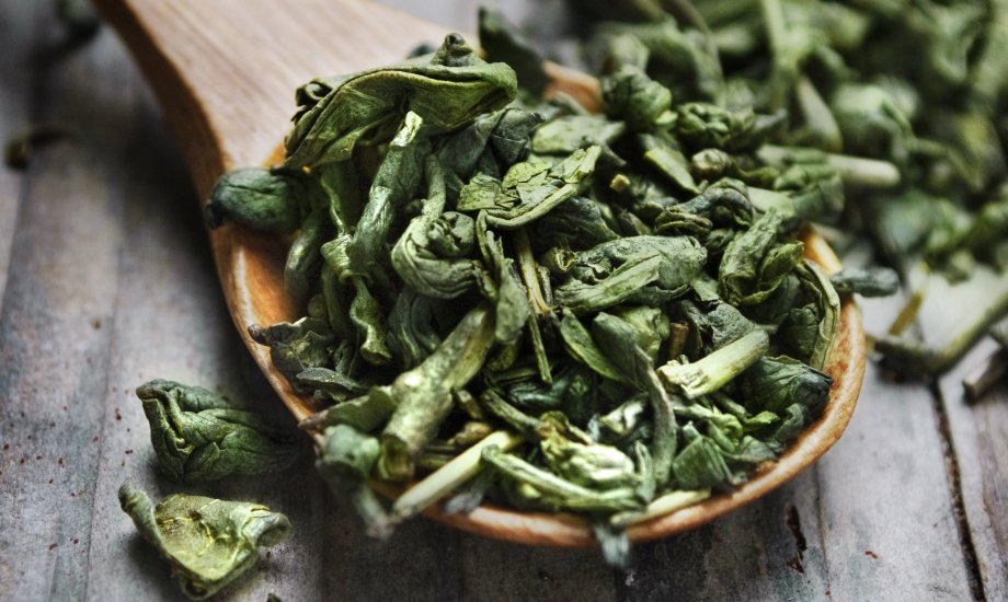 چای سبز شمال عمده