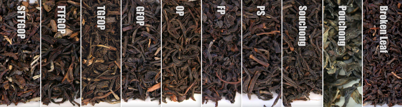خرید انواع چای جهت صادرات