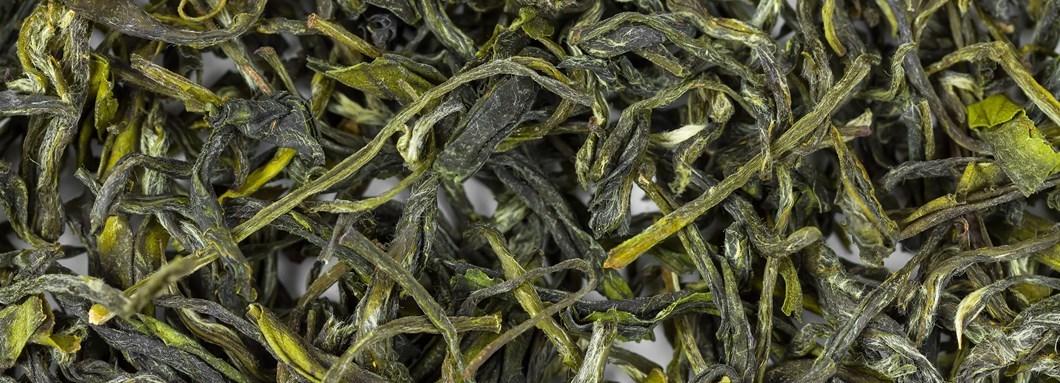 خرید عمده چای سبز شمال