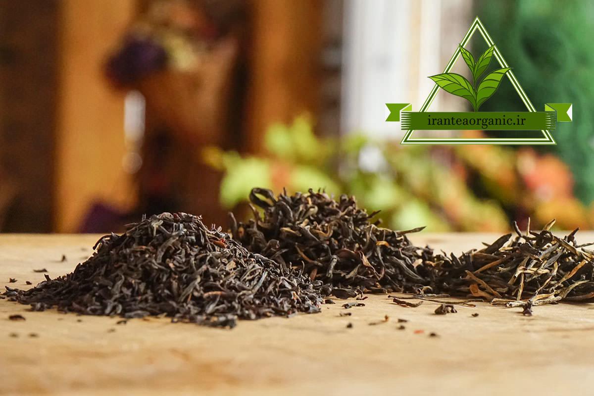 خرید بهترین انواع چای سیاه از کارخانه