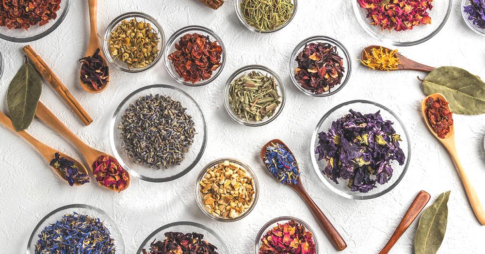 خرید چای شمال از سایت چای ارگانیک ایرانی