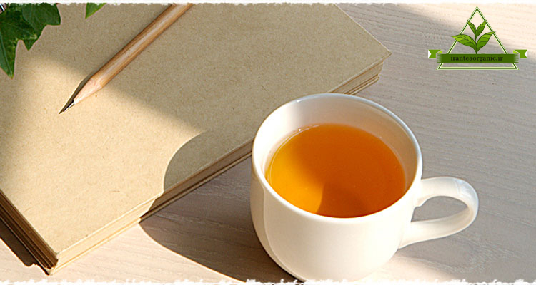 فروش ویژه چای شمال