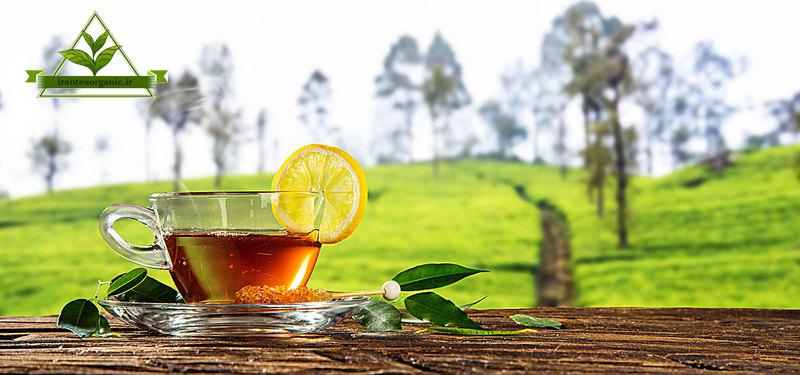 قیمت فروش بهترین چای