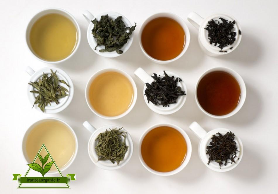 دسته بندی چای لاهیجان