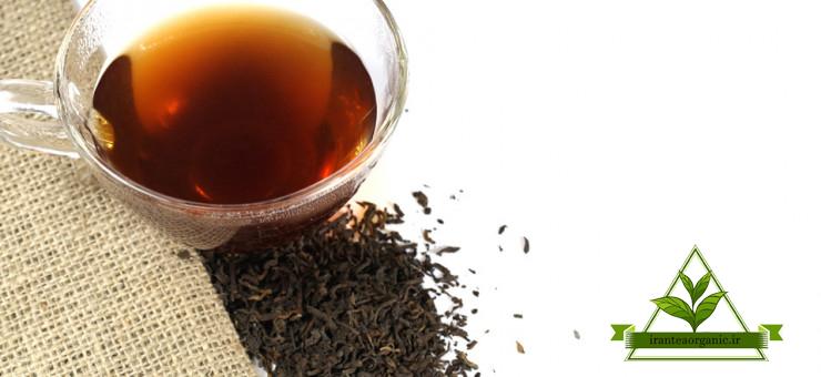 خرید چای ممتاز لاهیجان عمده