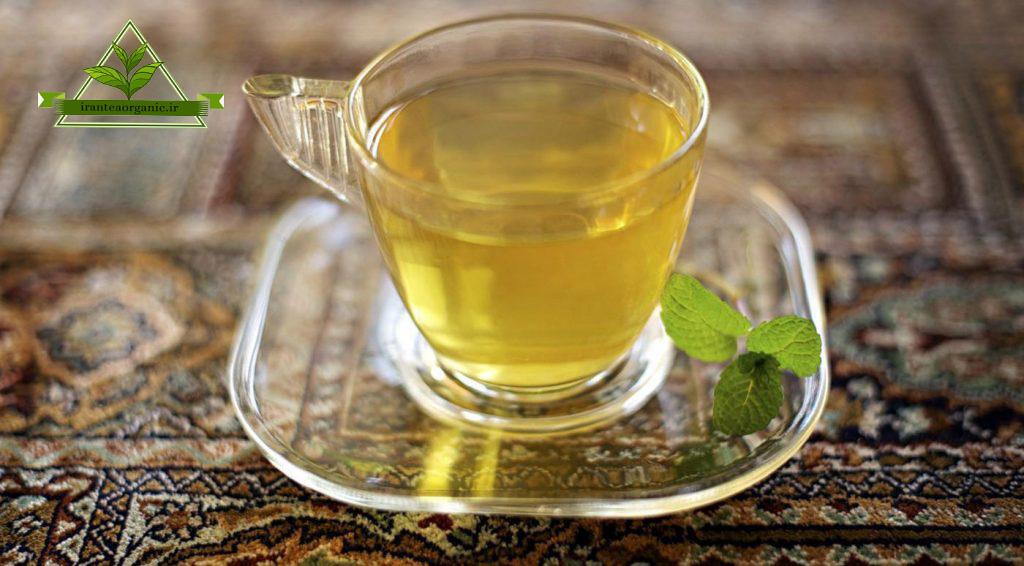 خواص چای سبز اصل