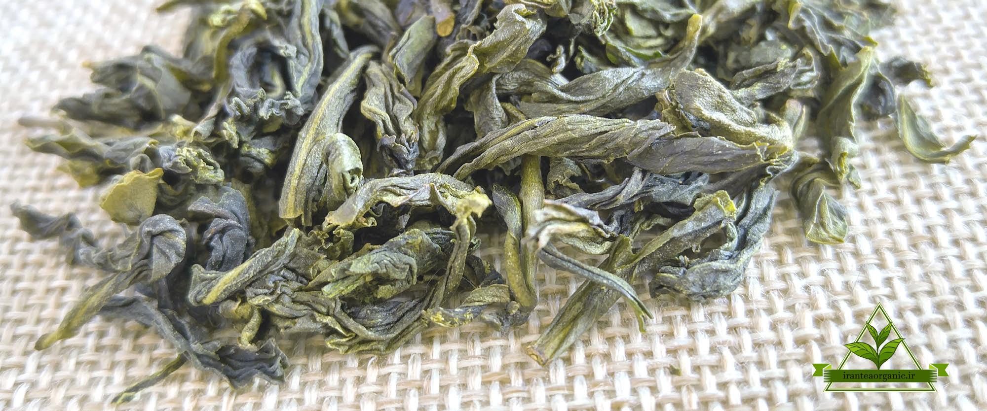 خرید چای سبز صادراتی ایرانی