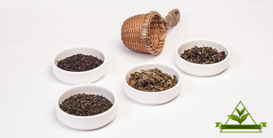 فروش عمده چای بهاره گیلان