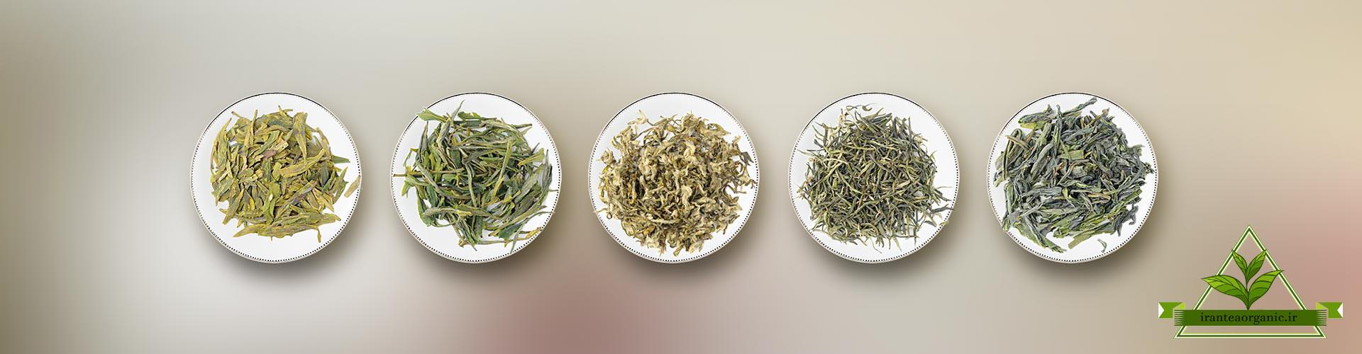 خرید چای سبز لاهیجان ارگانیک