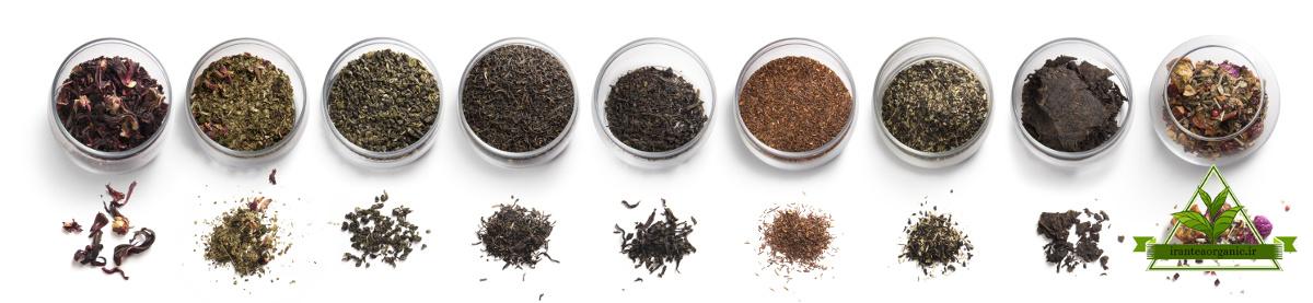 قیمت انواع چای ایرانی