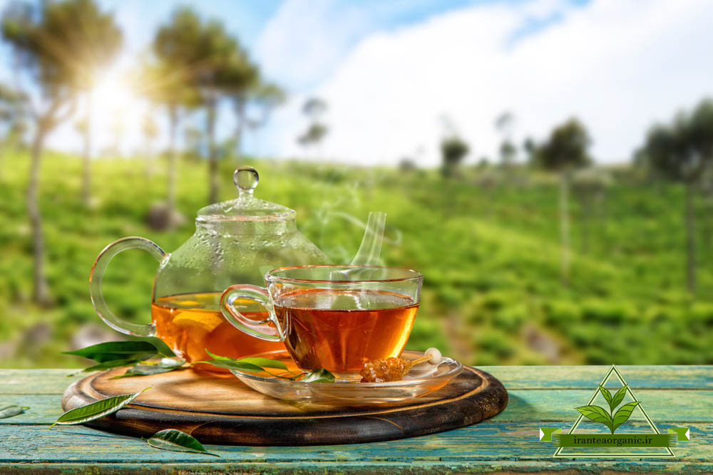 خرید چای ارگانیک ایرانی سیاه