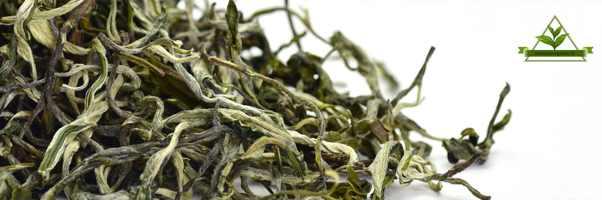 فروش عمدده چای سبز