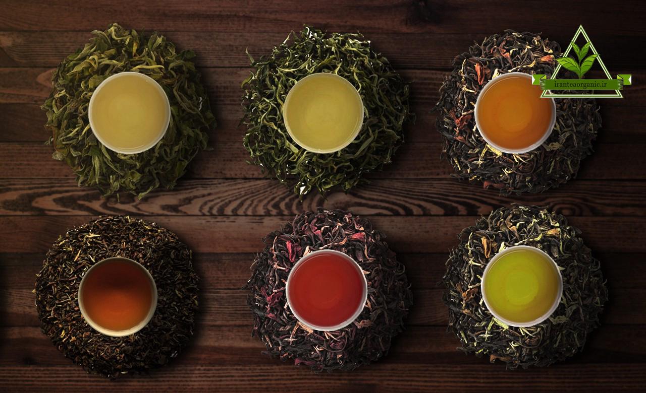 انواع چای صادراتی ایرانی