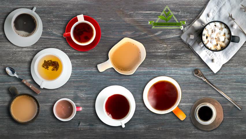 خرید چای ارگانیک شمال