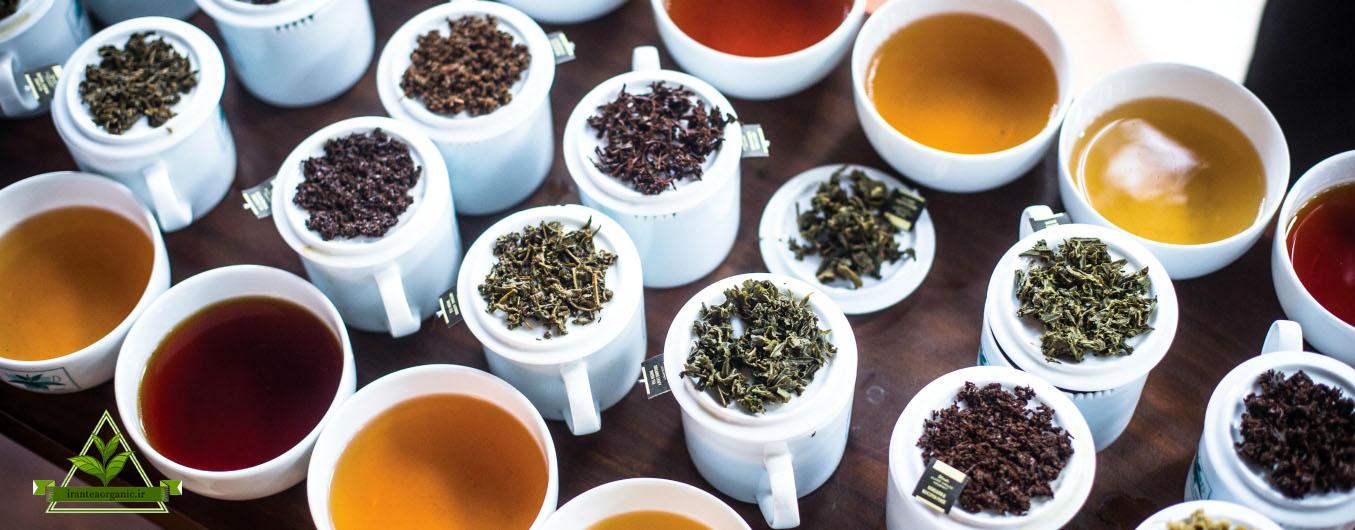 خرید اینترنتی چای ارگانیک شمال
