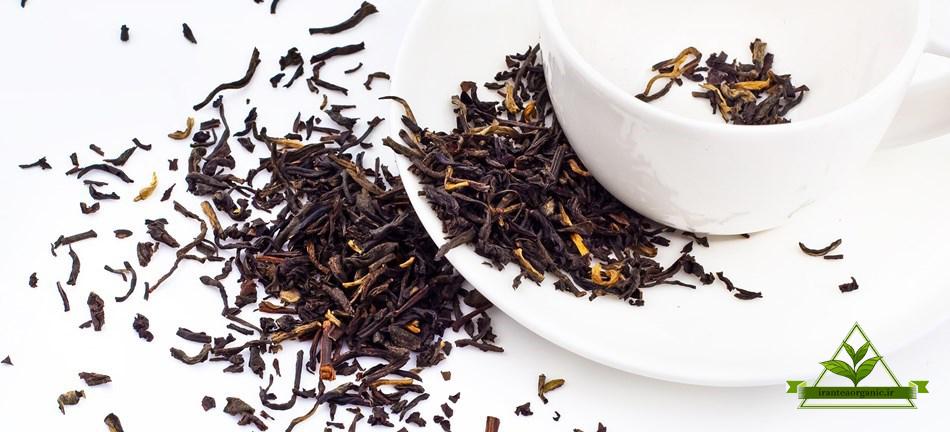خرید چای گیلان عمده