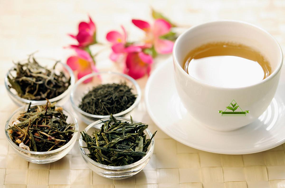 قیمت فروش چای سبز لاهیجان