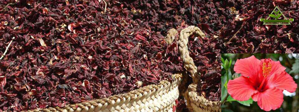 قیمت چای ترش ایرانی