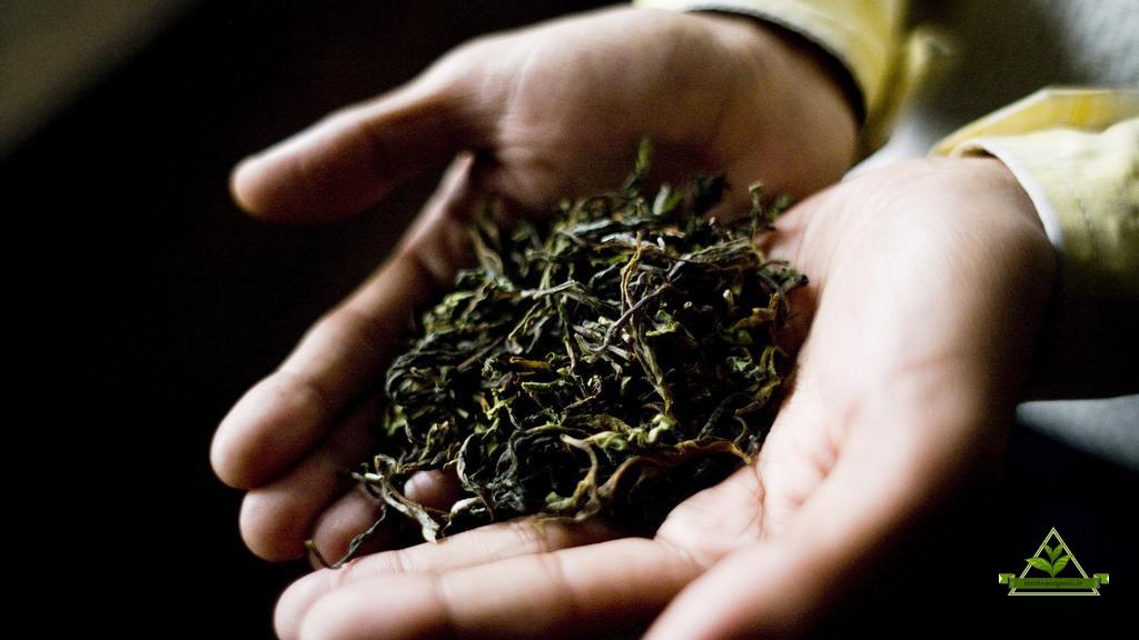فروش چای رفاه