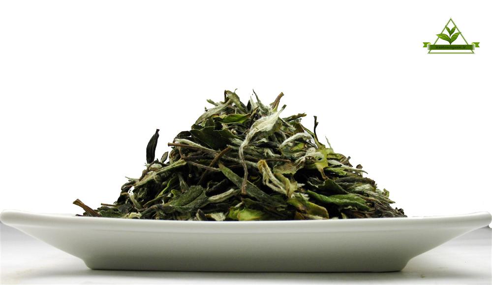چای رفاه لاهیجان سبز