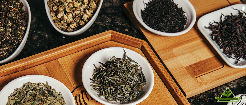 صادرات و فروش چای شمال ایرانی