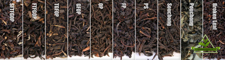 اسامی چای صادراتی ایرانی
