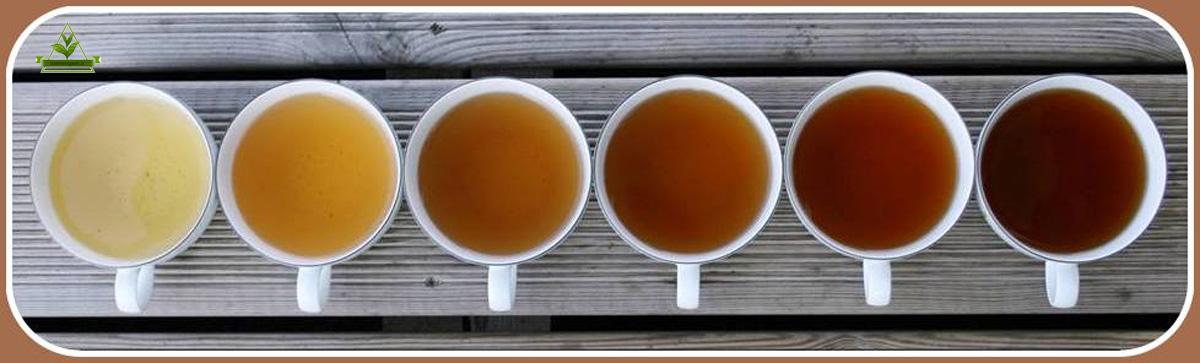 سفارش خرید چای ایران تضمینی