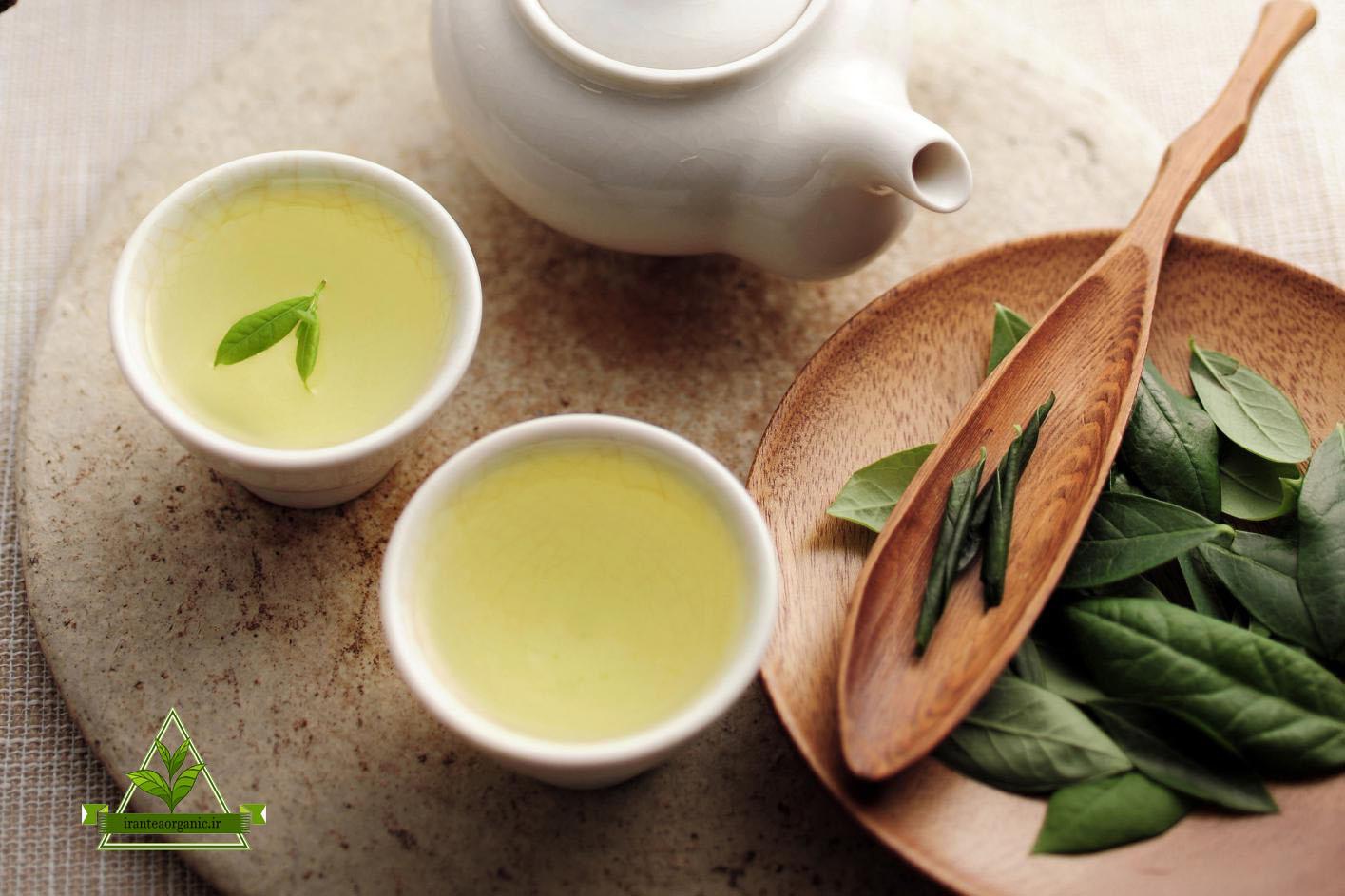 فروش انواع چای سبز اصل