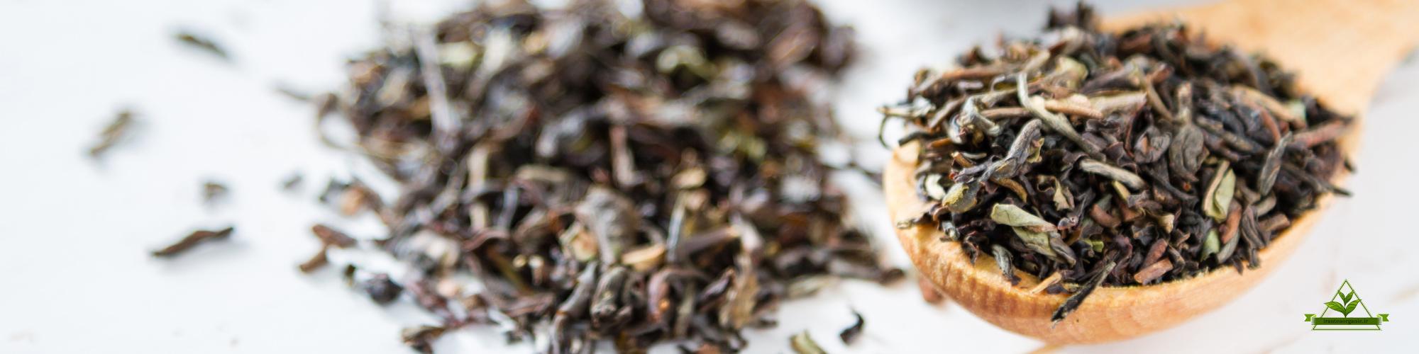 مراکز فروش عمده چای لاهیجان