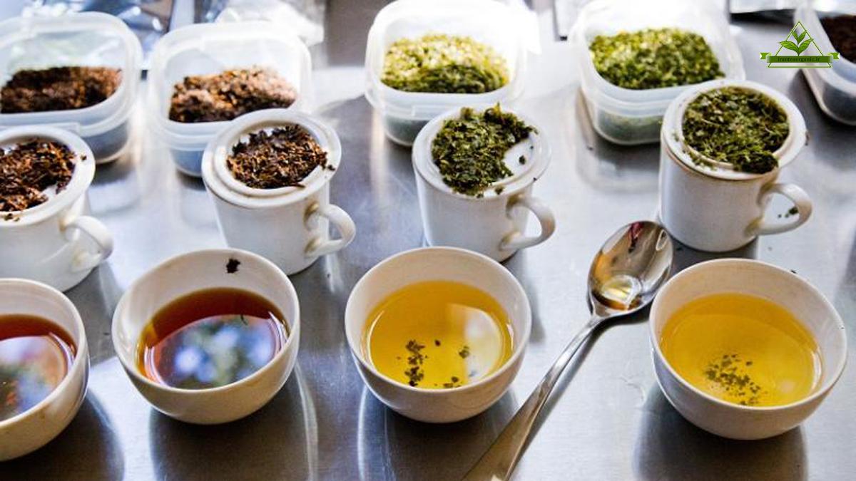 تنوع چای در مراکز فروش چای لاهیجان