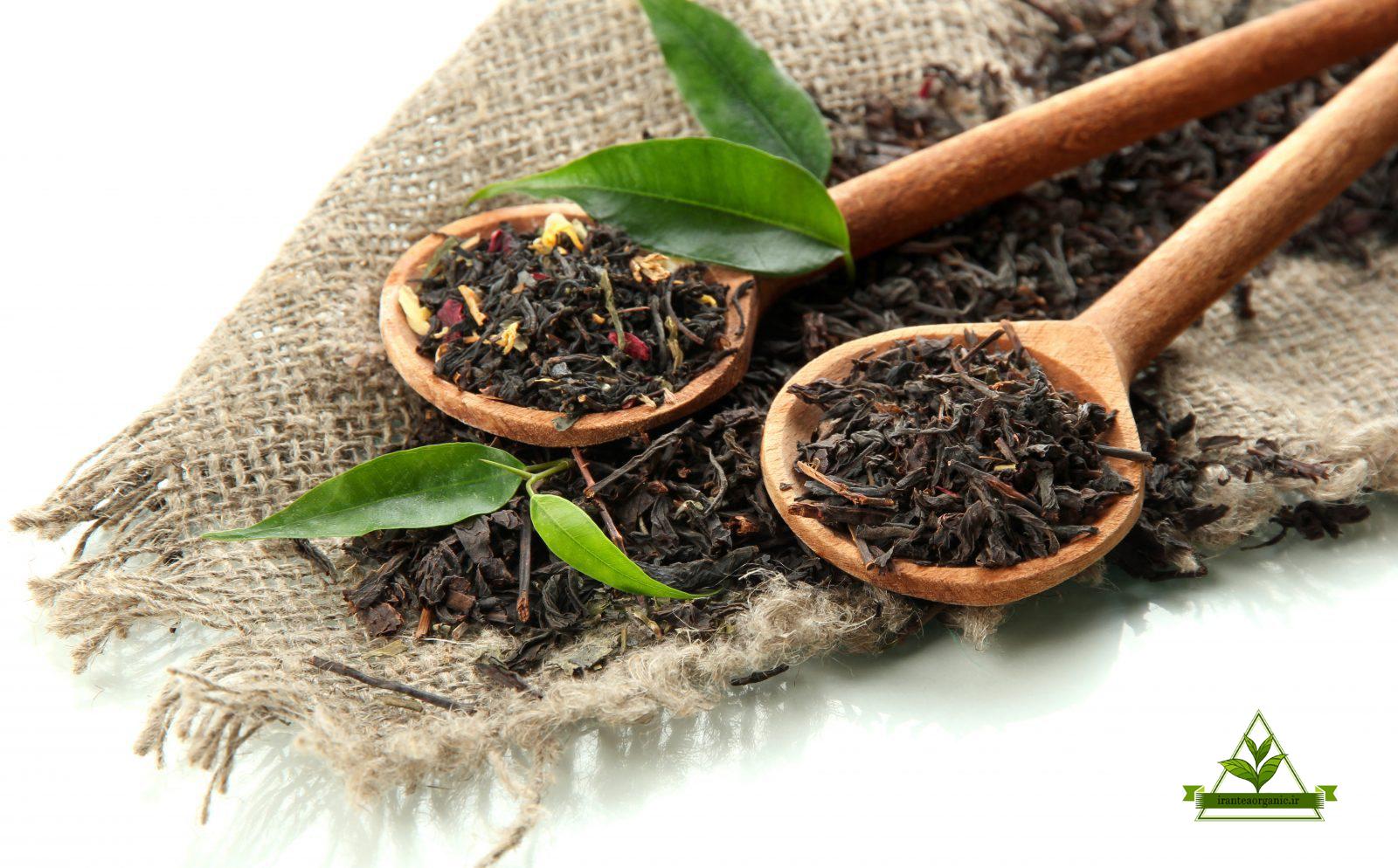 فروش چای لاهیجان در سراسر ایران