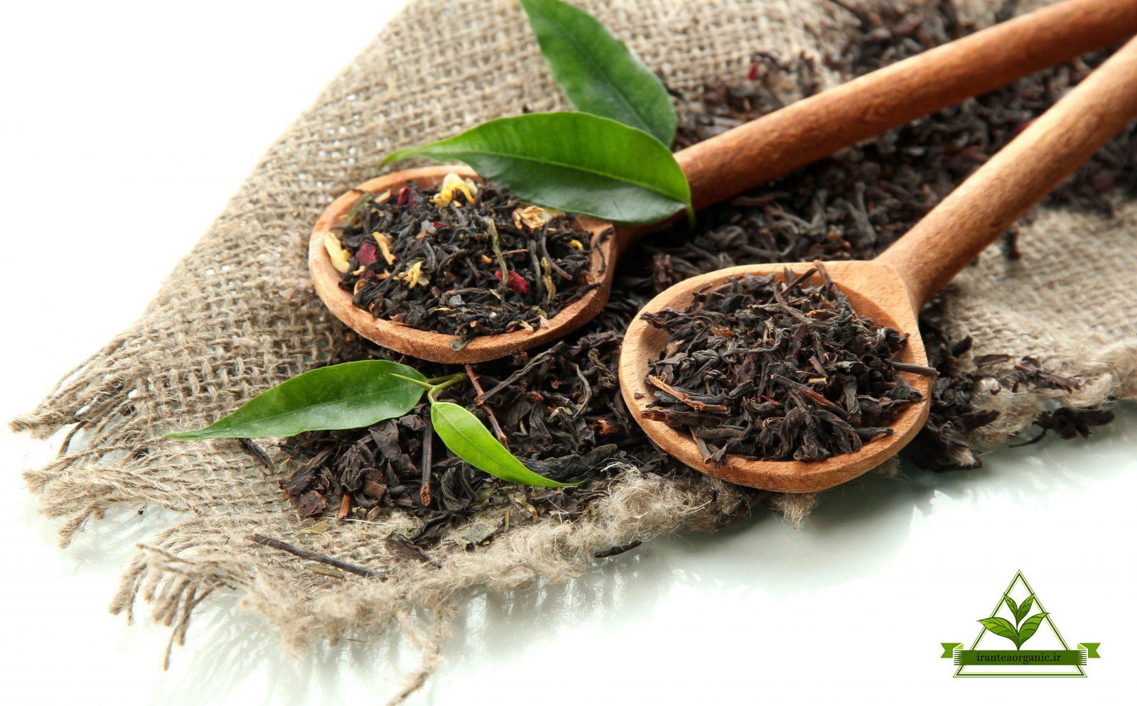خرید بهترین چای طبیعی لاهیجان