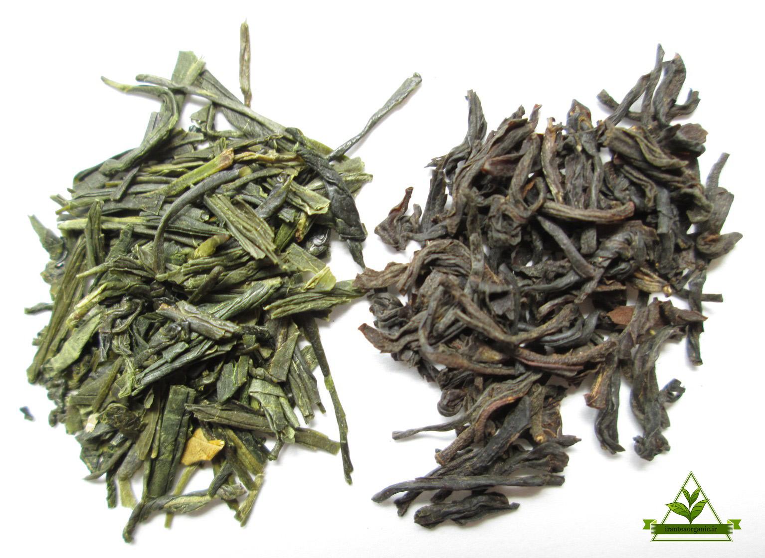 عرضه چای ایرانی لاهیجان