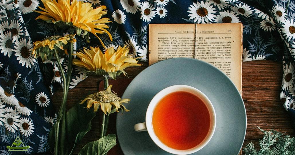 قیمت خرید چای ممتاز لاهیجان