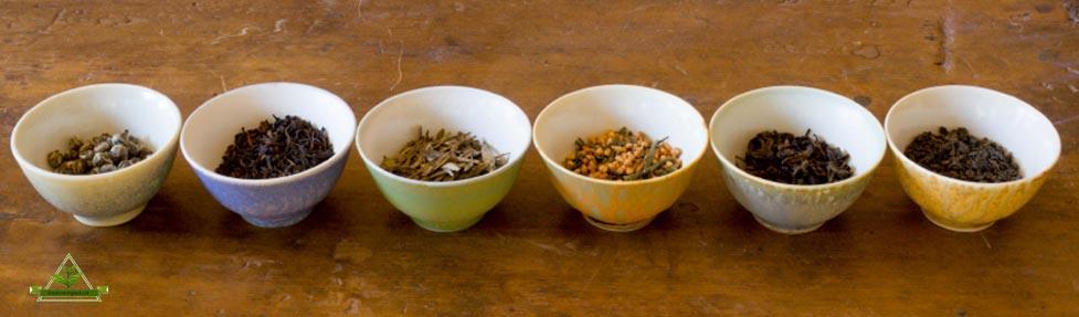 قیمت فروش چای لاهیجان