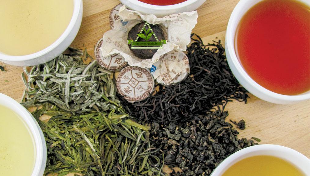 خرید چای سیاه و سبز اصل ایرانی