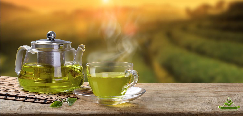 خواص چای سبز قلم درشت