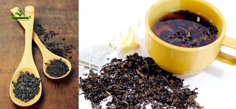 قیمت فروش چای سیاه ایرانی