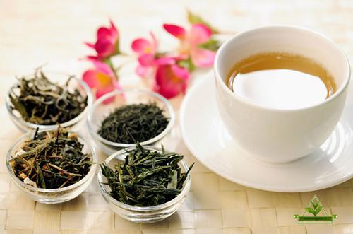 چای طبیعی لاهیجان