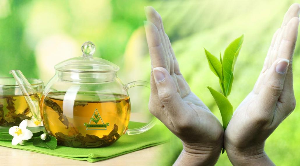 چای سبز قلم درشت لاهیجان