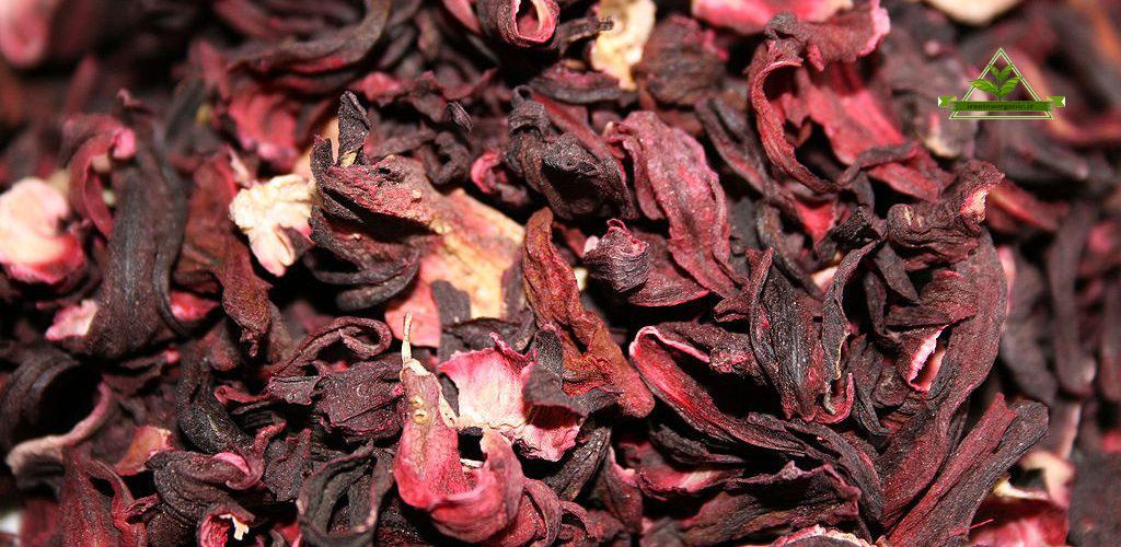 مرکز خرید چای ترش فله ایرانی