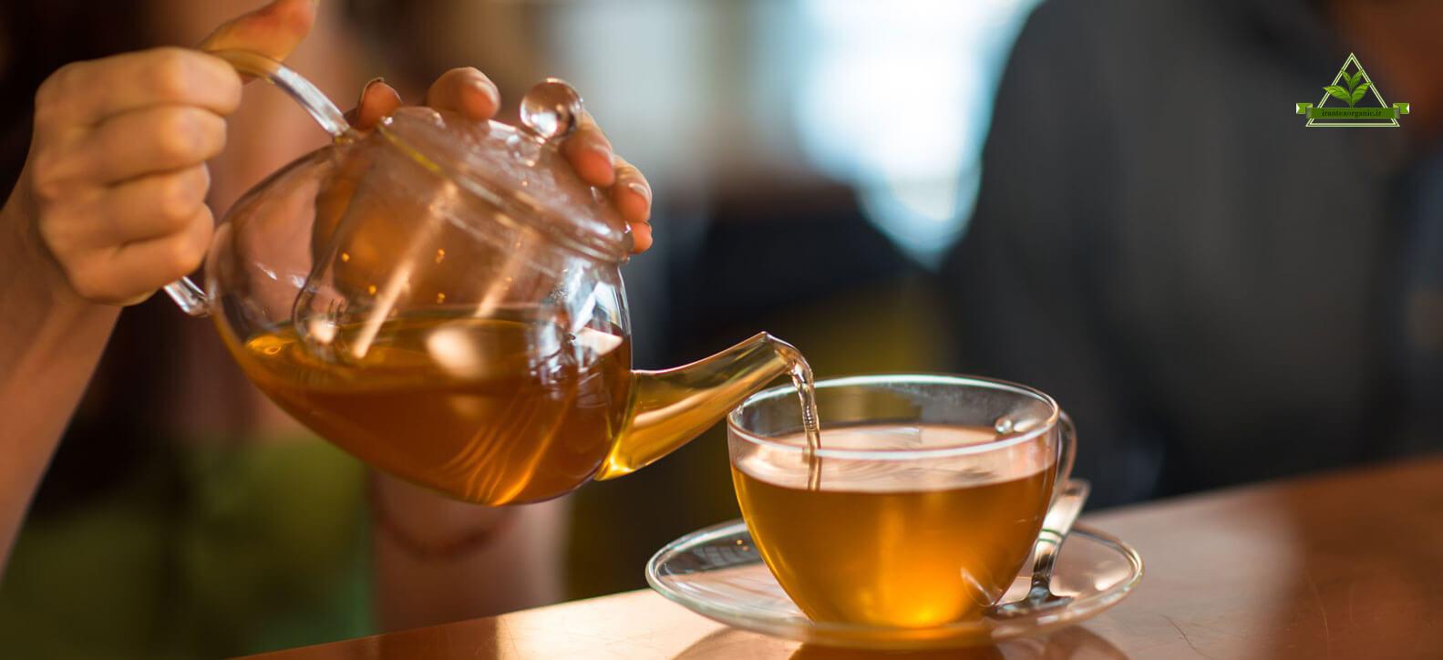 چای سرگل بهاره ارگانیک