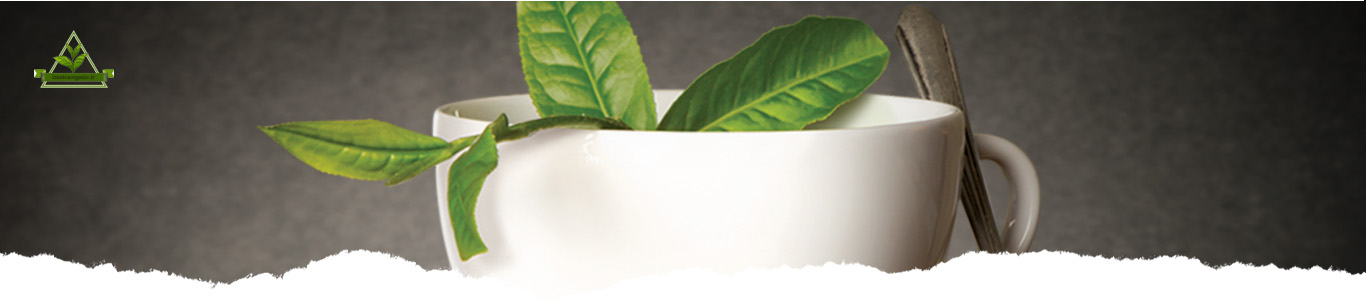 عرضه چای ایرانی در بازار جهانی