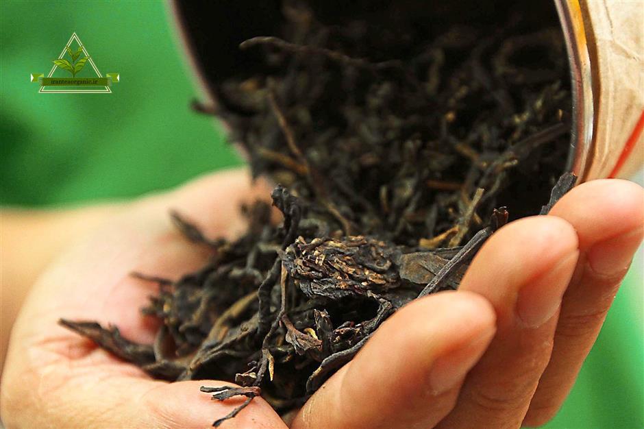 عرضه چای ایرانی کیلویی