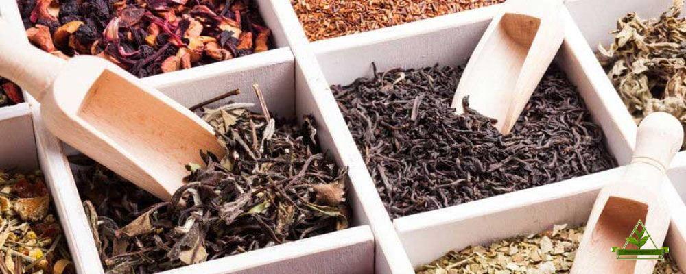 خرید چای اصیل فله ایرانی